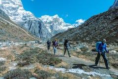 Αθλητική ομάδα των ορειβατών βουνών που περπατούν στο μονοπάτι που τονίζεται Στοκ Φωτογραφία