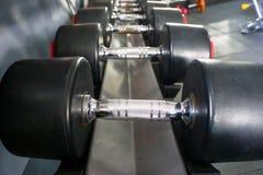 Αθλητικοί αλτήρες στη σύγχρονη αθλητική λέσχη Εξοπλισμός κατάρτισης βάρους Στοκ φωτογραφία με δικαίωμα ελεύθερης χρήσης