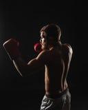 Αθλητικός γενειοφόρος μπόξερ με τα γάντια σε ένα σκοτεινό υπόβαθρο Στοκ εικόνα με δικαίωμα ελεύθερης χρήσης