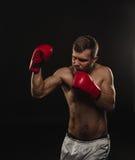 Αθλητικός γενειοφόρος μπόξερ με τα γάντια σε ένα σκοτεινό υπόβαθρο Στοκ φωτογραφία με δικαίωμα ελεύθερης χρήσης