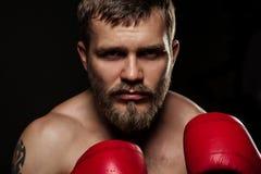 Αθλητικός γενειοφόρος μπόξερ με τα γάντια σε ένα σκοτεινό υπόβαθρο Στοκ εικόνες με δικαίωμα ελεύθερης χρήσης