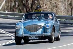 1954 αθλητικό ανοικτό αυτοκίνητο του Ώστιν Healey BN1 Στοκ Εικόνα