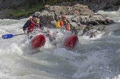 Αθλητικό καταμαράν στα ορμητικά σημεία ποταμού Στοκ Εικόνα