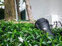 Αθλητικό φως δορών στον κήπο Στοκ φωτογραφία με δικαίωμα ελεύθερης χρήσης