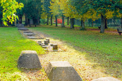 Αθλητισμός και υγεία στο φθινοπωρινό πάρκο Στοκ Φωτογραφίες