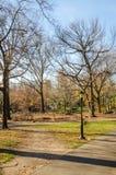 Αθλητισμός στο Central Park Νέα Υόρκη Στοκ φωτογραφία με δικαίωμα ελεύθερης χρήσης