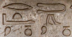 αιγυπτιακά hieroglyphs στοκ εικόνα με δικαίωμα ελεύθερης χρήσης