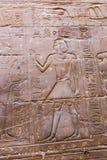 Αιγυπτιακές επιγραφές στο ναό - Αίγυπτος Στοκ Φωτογραφία
