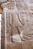 Αιγυπτιακές επιγραφές στο ναό - Αίγυπτος Στοκ φωτογραφία με δικαίωμα ελεύθερης χρήσης