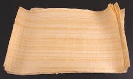 Αιγυπτιακός πάπυρος Στοκ Εικόνα