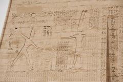 αιγυπτιακός τοίχος ναών hierogl Στοκ Φωτογραφίες