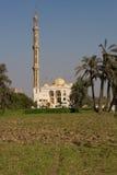 αιγυπτιακό μουσουλμανικό τέμενος Στοκ Εικόνες