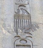 Αιγυπτιακό hieroglyphics στον αρχαίο Στοκ Φωτογραφίες