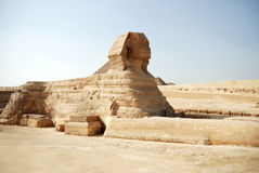 αιγυπτιακό sphinx του Καίρου Στοκ φωτογραφία με δικαίωμα ελεύθερης χρήσης