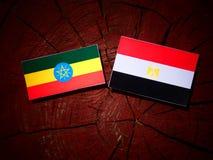 Αιθιοπική σημαία με την αιγυπτιακή σημαία σε ένα κολόβωμα δέντρων Στοκ Φωτογραφία