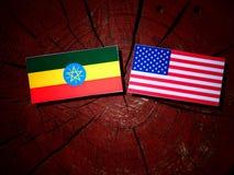 Αιθιοπική σημαία με την ΑΜΕΡΙΚΑΝΙΚΗ σημαία σε ένα κολόβωμα δέντρων Στοκ εικόνες με δικαίωμα ελεύθερης χρήσης