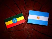 Αιθιοπική σημαία με την αργεντινή σημαία σε ένα κολόβωμα δέντρων που απομονώνεται Στοκ Εικόνες