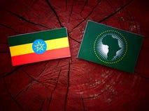 Αιθιοπική σημαία με την αφρικανική σημαία ένωσης σε ένα κολόβωμα δέντρων Στοκ Εικόνα