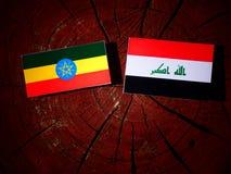 Αιθιοπική σημαία με την ιρακινή σημαία σε ένα κολόβωμα δέντρων που απομονώνεται Στοκ Εικόνες