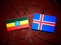 Αιθιοπική σημαία με την ισλανδική σημαία σε ένα κολόβωμα δέντρων που απομονώνεται Στοκ Εικόνες