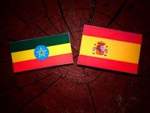Αιθιοπική σημαία με την ισπανική σημαία σε ένα κολόβωμα δέντρων Στοκ Εικόνα