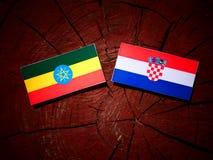 Αιθιοπική σημαία με την κροατική σημαία σε ένα κολόβωμα δέντρων που απομονώνεται Στοκ Εικόνα