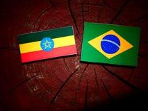 Αιθιοπική σημαία με τη βραζιλιάνα σημαία σε ένα κολόβωμα δέντρων που απομονώνεται Στοκ εικόνα με δικαίωμα ελεύθερης χρήσης