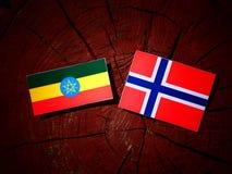 Αιθιοπική σημαία με τη νορβηγική σημαία σε ένα κολόβωμα δέντρων που απομονώνεται Στοκ Εικόνα