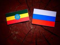 Αιθιοπική σημαία με τη ρωσική σημαία σε ένα κολόβωμα δέντρων Στοκ εικόνα με δικαίωμα ελεύθερης χρήσης