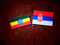Αιθιοπική σημαία με τη σερβική σημαία σε ένα κολόβωμα δέντρων Στοκ Φωτογραφία