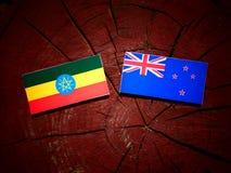 Αιθιοπική σημαία με τη σημαία της Νέας Ζηλανδίας σε ένα κολόβωμα δέντρων που απομονώνεται Στοκ Εικόνες