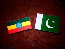 Αιθιοπική σημαία με τη σημαία του Πακιστάν σε ένα κολόβωμα δέντρων που απομονώνεται Στοκ φωτογραφία με δικαίωμα ελεύθερης χρήσης