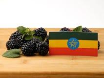 Αιθιοπική σημαία σε μια ξύλινη επιτροπή με τα βατόμουρα που απομονώνεται στο α Στοκ εικόνα με δικαίωμα ελεύθερης χρήσης