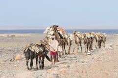 αιθιοπικό άλας τροχόσπιτ&ome στοκ εικόνες με δικαίωμα ελεύθερης χρήσης