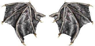 Αιματηρά φτερά δράκων, που απομονώνονται στο άσπρο υπόβαθρο απεικόνιση αποθεμάτων