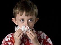 αιματηρή μύτη Στοκ εικόνες με δικαίωμα ελεύθερης χρήσης