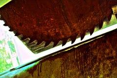 Αιματηρή ρόδα Στοκ εικόνα με δικαίωμα ελεύθερης χρήσης