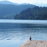 αιμορραγημένη λίμνη Σλοβ&epsilo στοκ φωτογραφία με δικαίωμα ελεύθερης χρήσης
