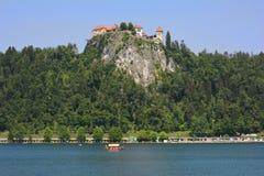 αιμορραγημένος vintgar καταρράκτης αιθαλομίχλης της Σλοβενίας Στοκ εικόνα με δικαίωμα ελεύθερης χρήσης