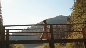 Αινιγματική νύμφη νέων κοριτσιών που περπατά στην ξύλινη γέφυρα πέρα από τον ποταμό στα Καρπάθια βουνά αναμμένα από συναρπαστικό απόθεμα βίντεο