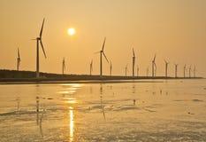 Αιολική ενέργεια ακτών της Ταϊβάν Στοκ φωτογραφία με δικαίωμα ελεύθερης χρήσης