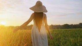 Αισθησιακή νέα γυναίκα στο άσπρο φόρεμα που απολαμβάνει ιώδες lavender που αρχειοθετείται στο όμορφο θερινό ηλιοβασίλεμα Νέα θηλυ φιλμ μικρού μήκους