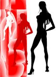 αισθησιακή σκιαγραφία ο Στοκ εικόνες με δικαίωμα ελεύθερης χρήσης