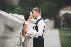 Αισθησιακό πορτρέτο ενός νέου γαμήλιου ζεύγους υπαίθριος Στοκ εικόνα με δικαίωμα ελεύθερης χρήσης