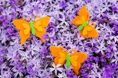 Αισθητές πορτοκάλι πεταλούδες με μια θάλασσα των πορφυρών ανθών Στοκ Εικόνες