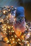 Αισθητό πουλί παιχνιδιών που περιβάλλεται από τα φω'τα Χριστουγέννων στο πάτωμα Στοκ φωτογραφία με δικαίωμα ελεύθερης χρήσης