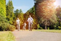 Αισιόδοξη ενεργός οικογένεια που κάνει τον τρόπο τους μέσω του πάρκου Στοκ φωτογραφία με δικαίωμα ελεύθερης χρήσης