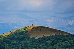 Αιχμές βουνών που καλύπτονται με τη δασική σειρά βουνών wildlife αλπικό τοπίο στοκ εικόνες