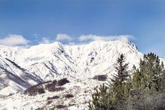Αιχμές βουνών Wasatch στο βόρειο Utah στο wintertime Στοκ Φωτογραφίες