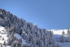 Αιχμές βουνών Wasatch στο βόρειο Utah στο wintertime Στοκ φωτογραφία με δικαίωμα ελεύθερης χρήσης